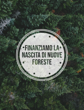 amazon-foreste-it